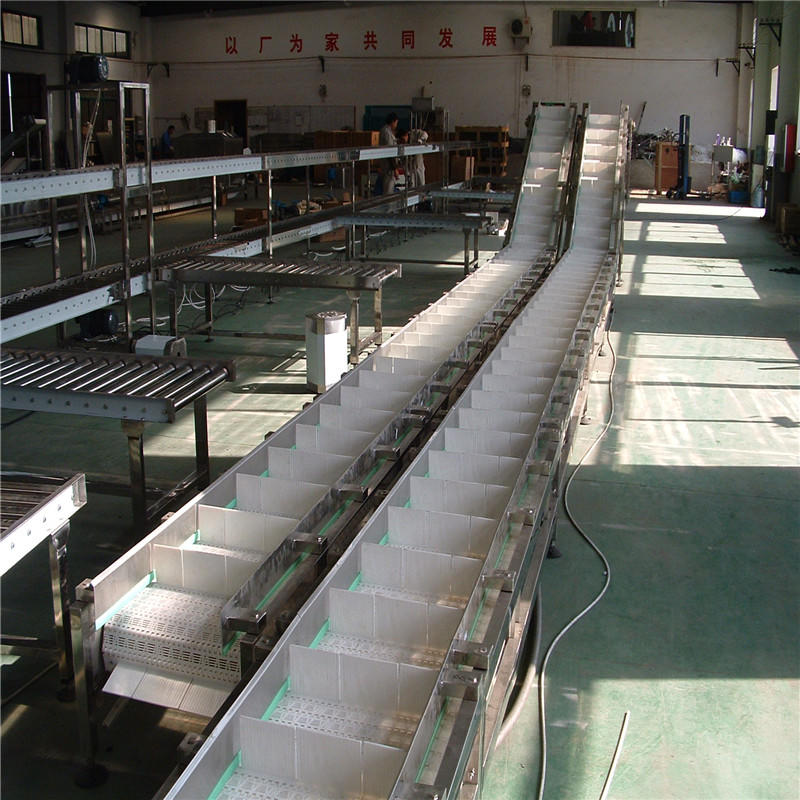 Plastic Chain Conveyor